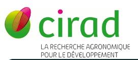 CIRAD–Montpellier